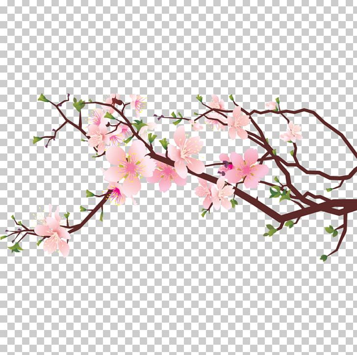 Cherry Blossom Drawing PNG, Clipart, Art, Blossom, Branch, Cherries.