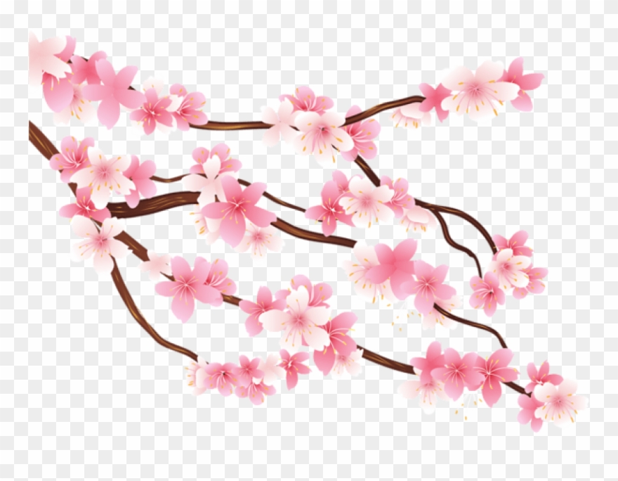 Free Png Pink Spring Branch Png Images Transparent.