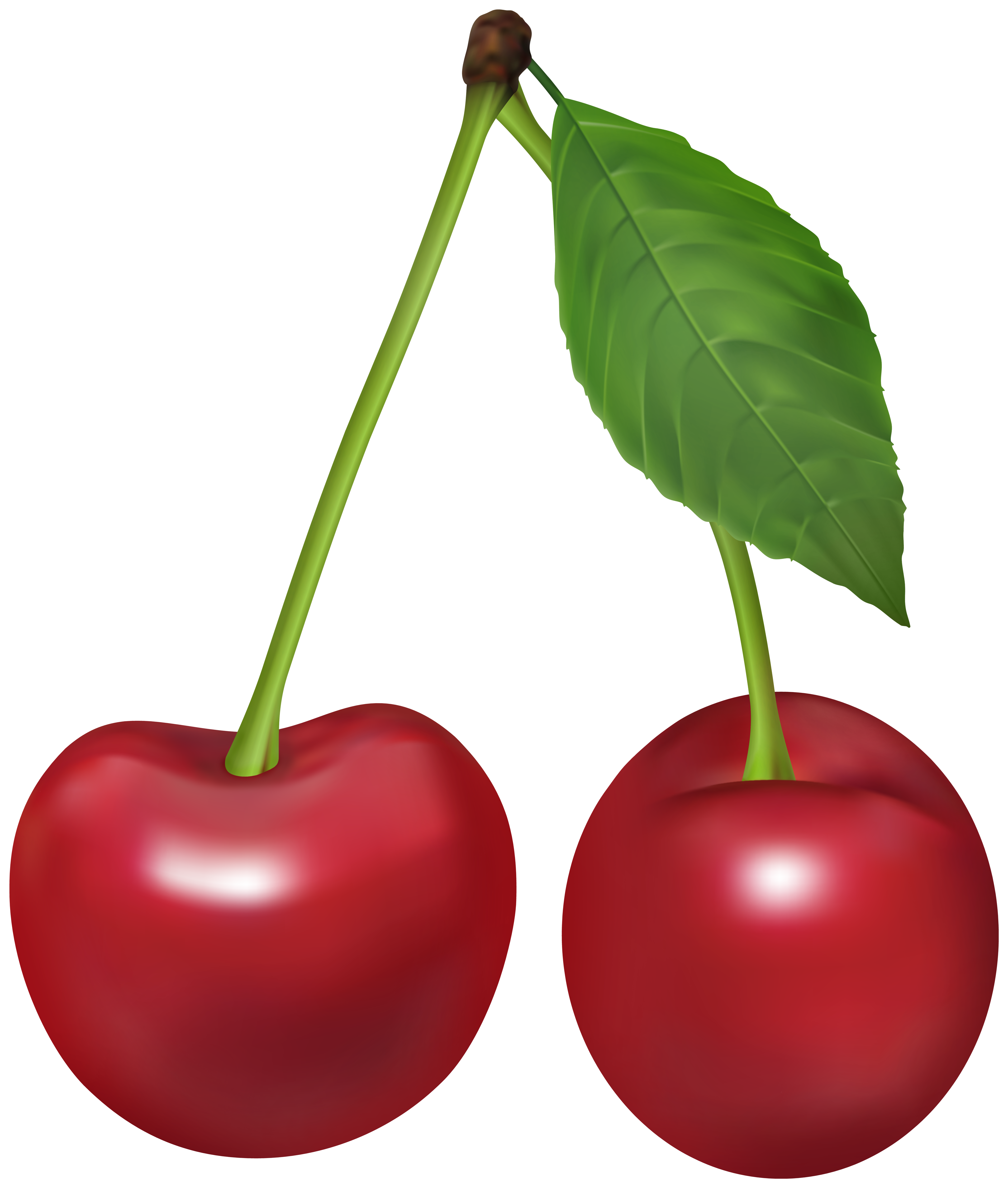 Cherry PNG Clipart Image.