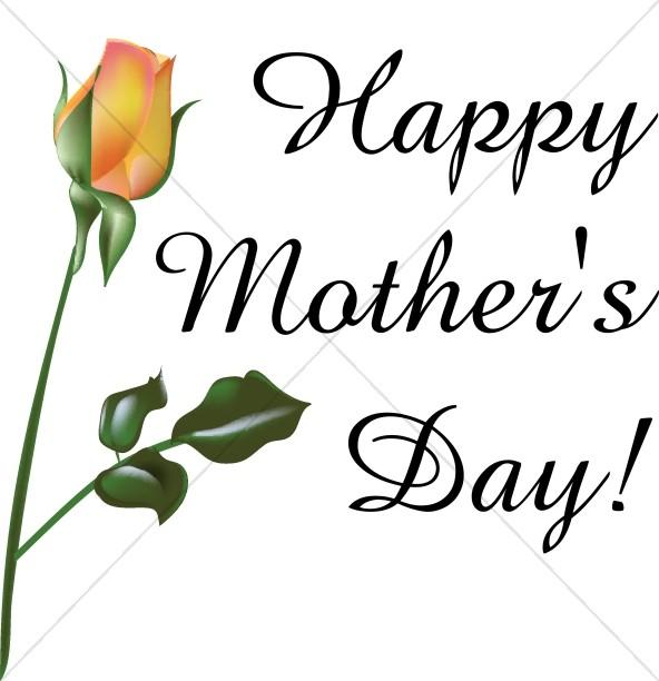 Orange Rose Happy Mother's Day.