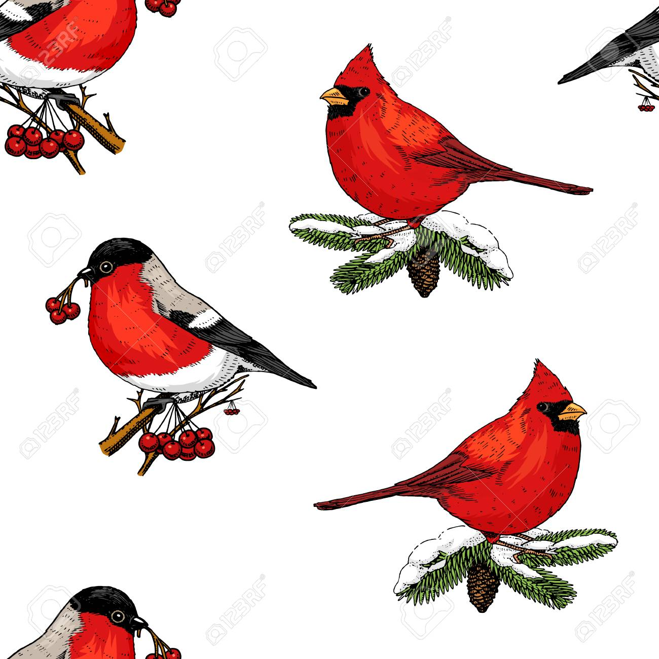 seamless pattern holly and bullfinch, red cardinal, birds. Merry...