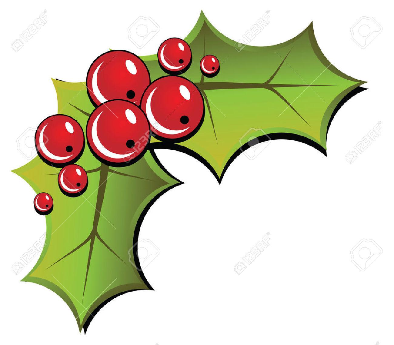 Christmas Holly Isolated On White Background. Illustration.