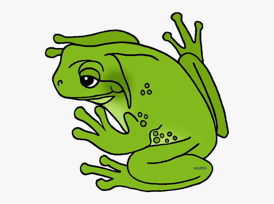 Green Tree Frog Clipart , Transparent Cartoon, Free Cliparts.