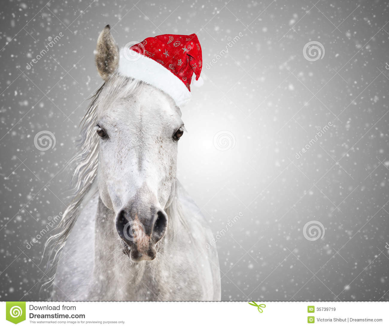 White Christmas Horse With Santa Hat On Gray Background Snowfall.
