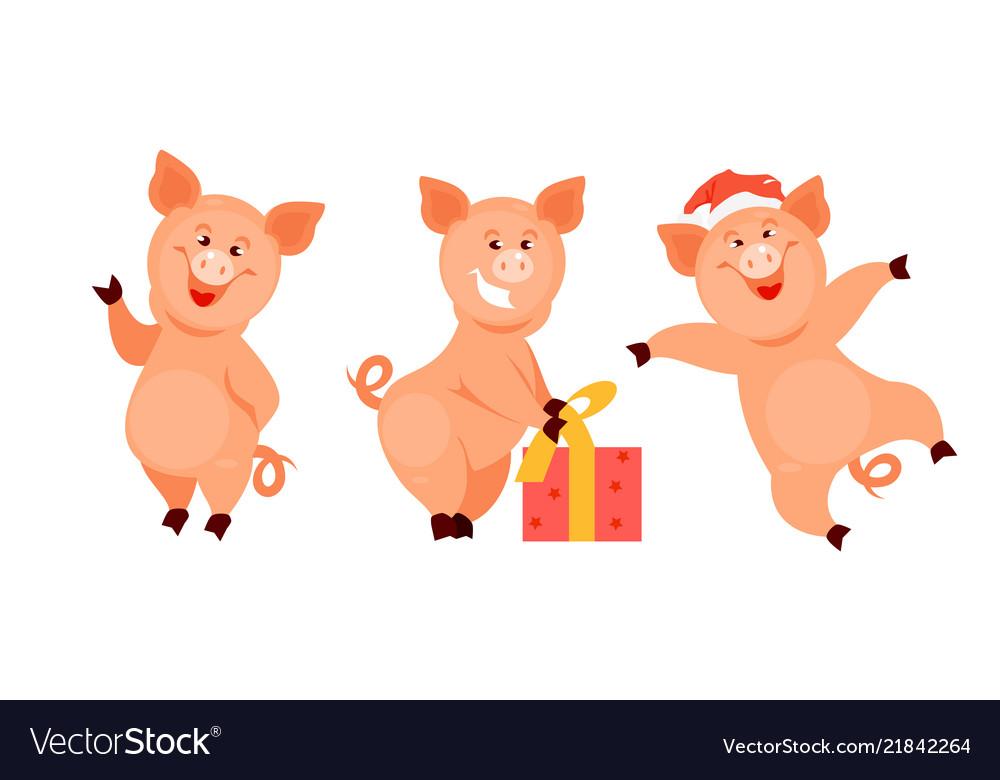 Christmas pigs.