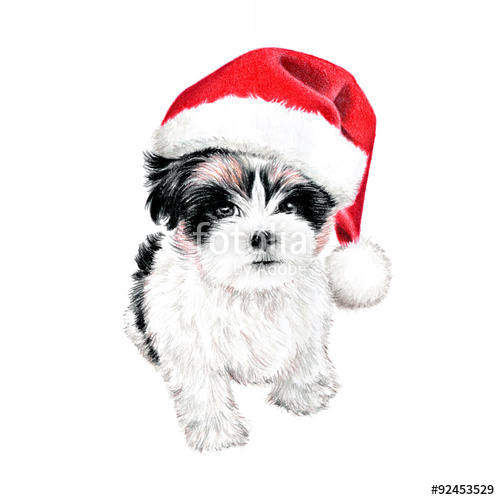 hand drawn puppy dog with santa claus hat, cute fun Christmas card.