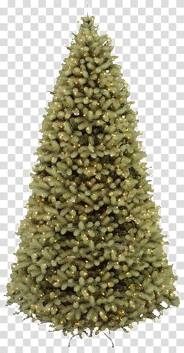 Free Christmas Trees shop Brushes plus Cutout, green.
