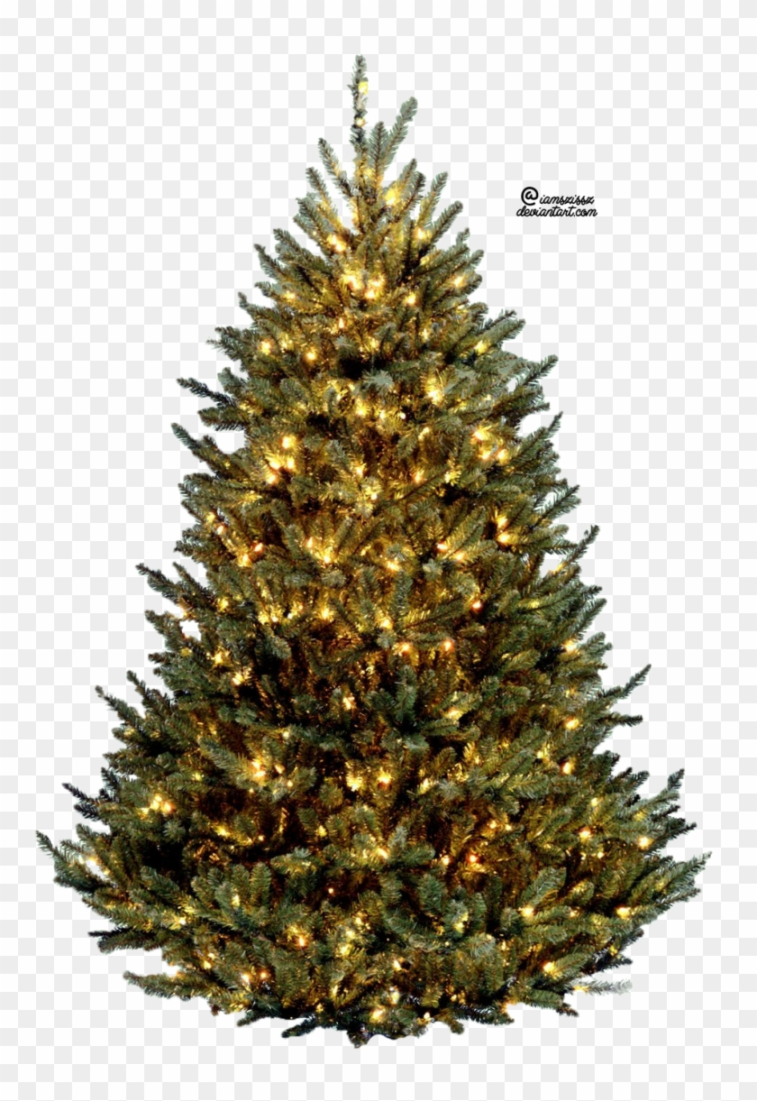 Christmas Tree Png.