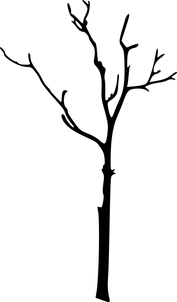 Download Free png bare tree silhouette.