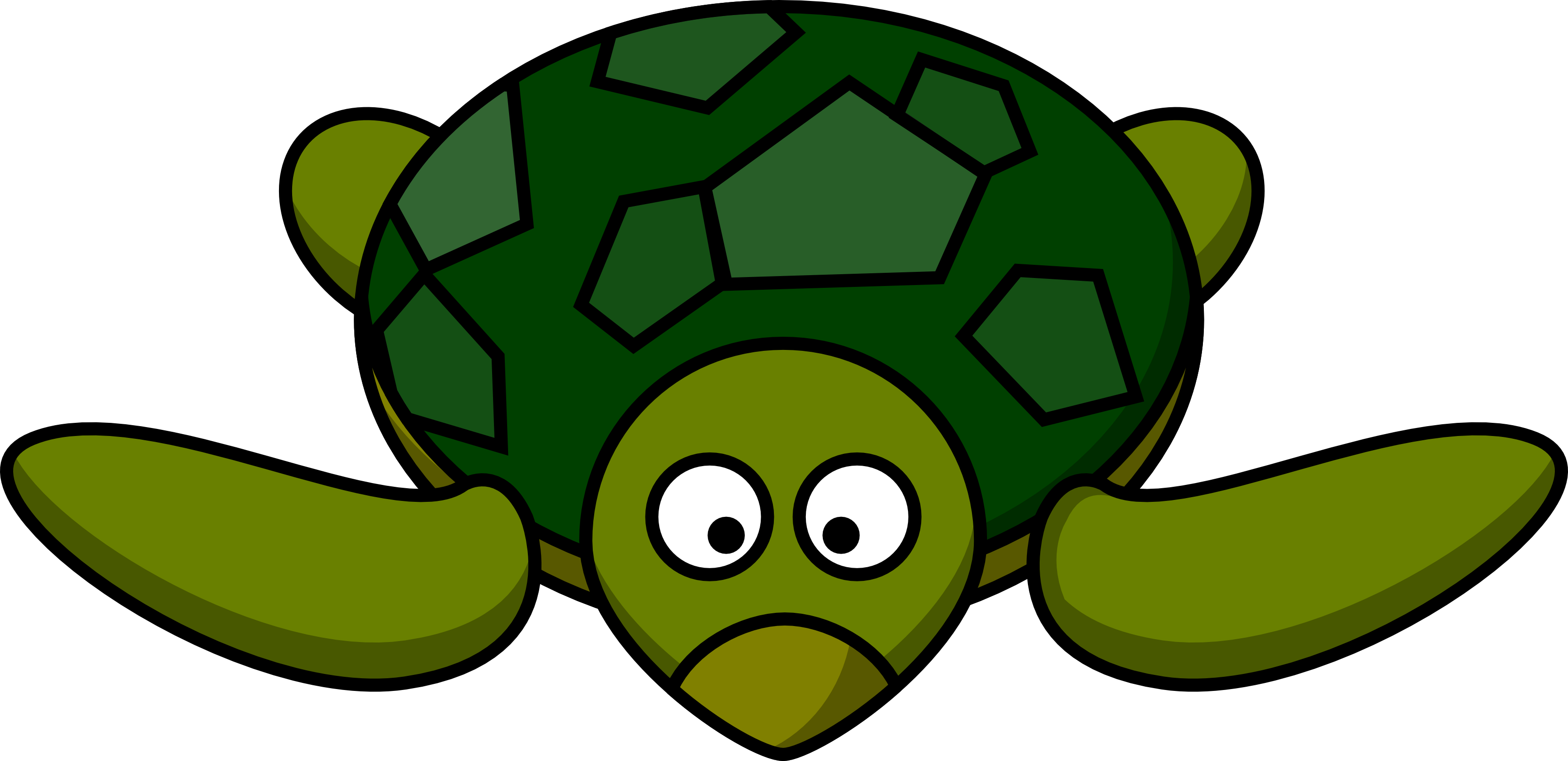 Picture Of Cartoon Turtle.