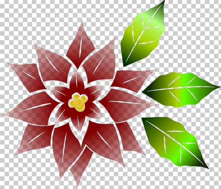 Poinsettia Flower Christmas PNG, Clipart, Christmas, Christmas.