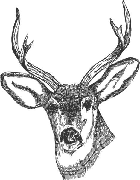 Deer Head clip art Free vector in Open office drawing svg ( .svg.