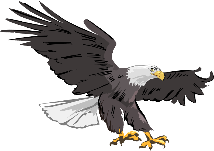 Eagle Free Clipart Of Eagles History Animations Transparent Png.
