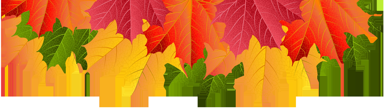 Fall Leaves Border Transparent Clip Art Image.