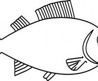 Fish Outline Clip Art 3.