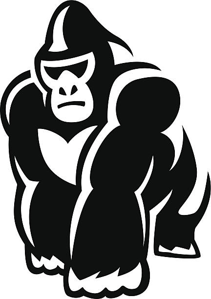 Best Silverback Gorilla Illustrations, Royalty.