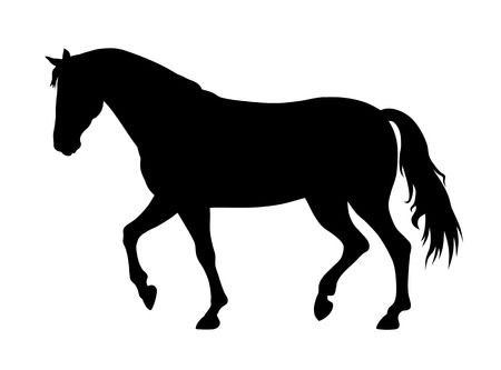 30,274 Horse Silhouette Stock Vector Illustration And Royalty Free.