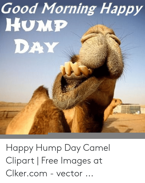 Good Morning Happy HUMP DAY Happy Hump Day Camel Clipart.