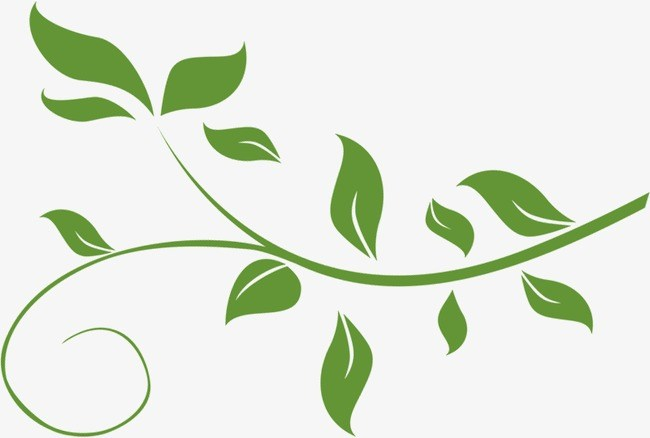 Free clipart leaves and vines 4 » Clipart Portal.