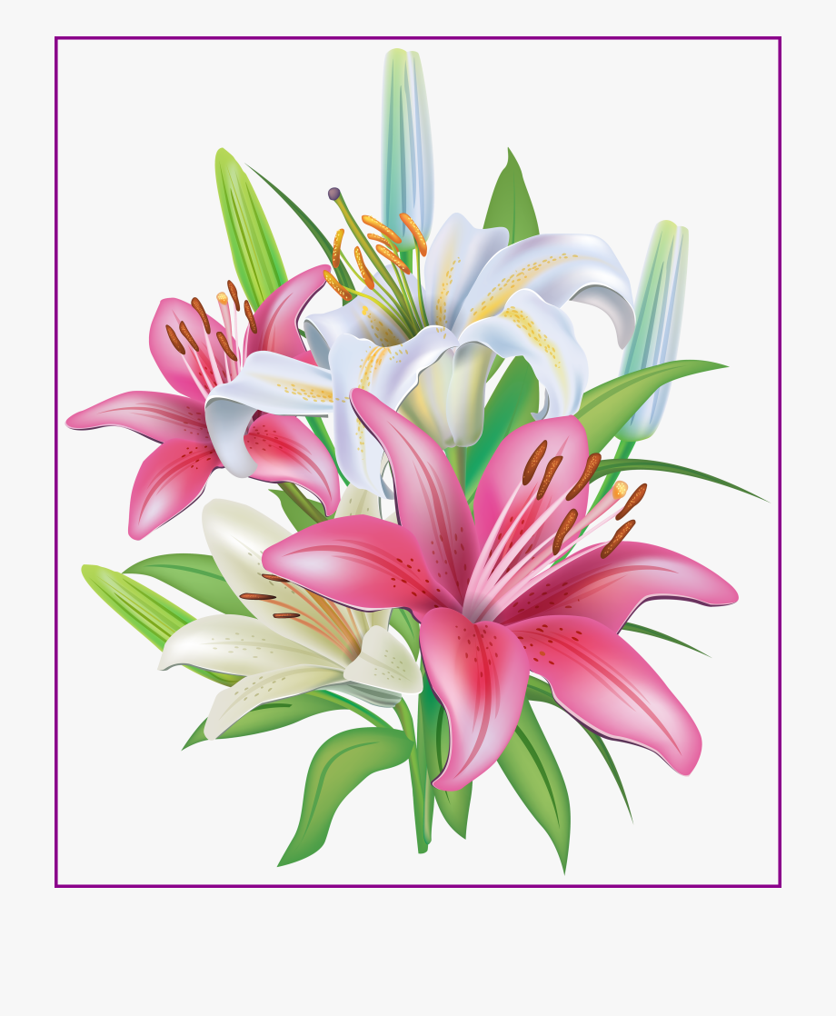 Lilies Flowers Decoration Png Clipart Image.