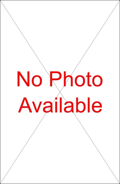 No Photo Available clip art Free vector in Open office drawing svg.