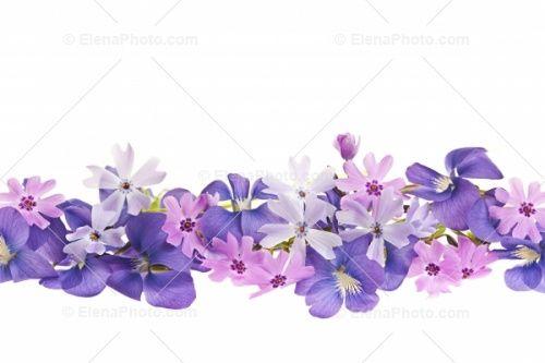 Spring Flower Border Clip Art.