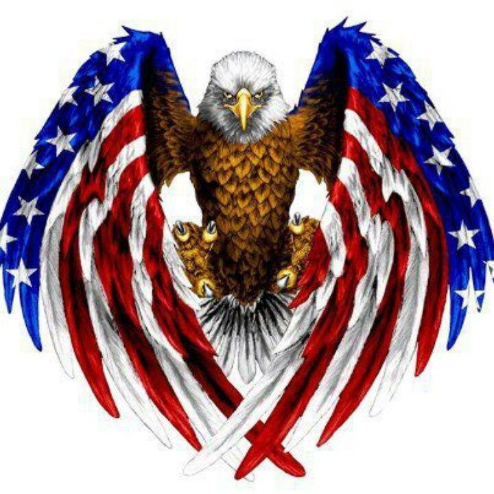 American Flag With Eagle And Dog Tags Free Clipart.