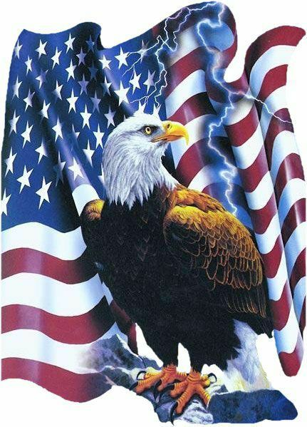 17 Best ideas about American Flag Eagle on Pinterest.