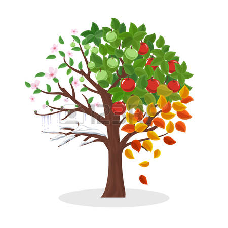 15,001 Apple Tree Stock Illustrations, Cliparts And Royalty Free.