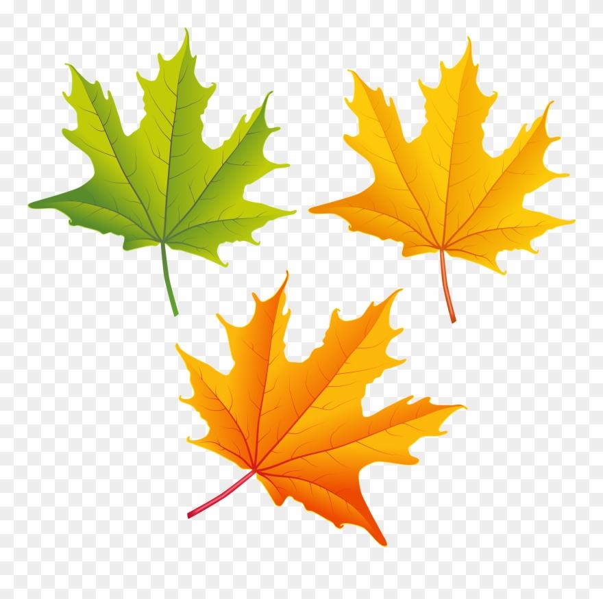 Top 82 Autumn Leaf Clip Art Free Clipart Image.