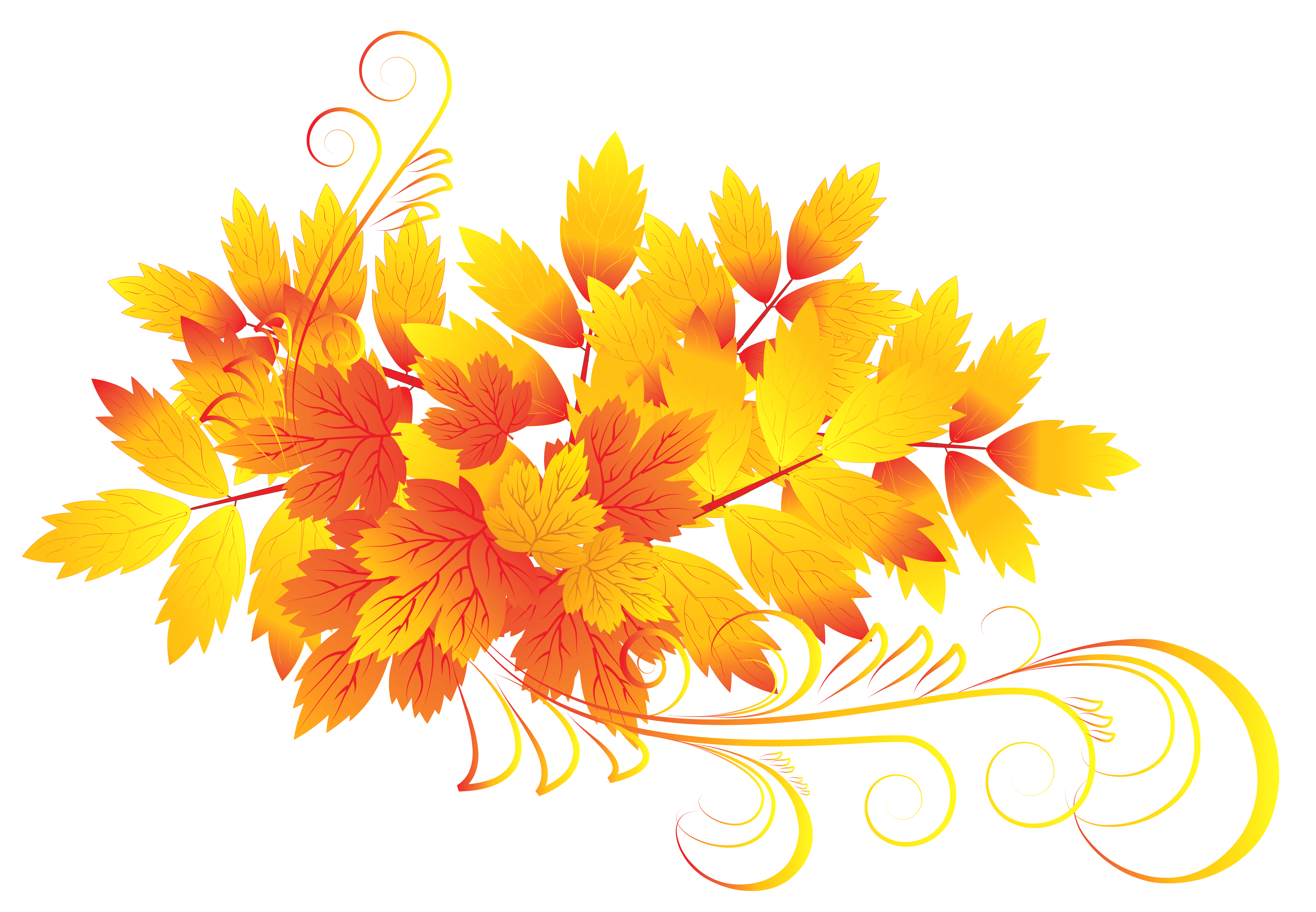 free clipart autumn flowers 20 free Cliparts | Download ...