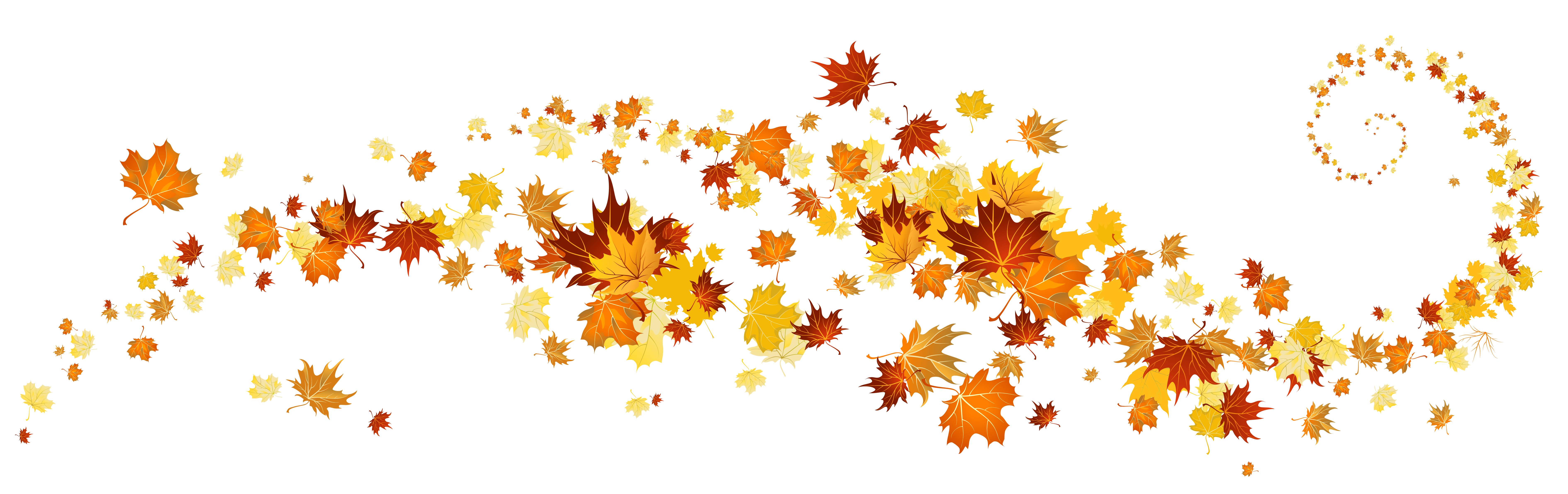 Autumn flowers clipart AUTUMN FLOWERS with fall color.