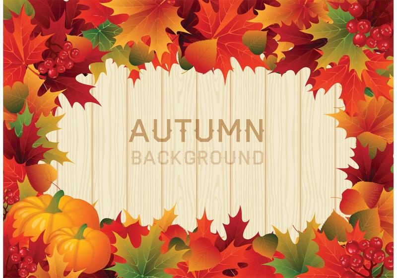 Vector Colorful Autumn Leaves Border.