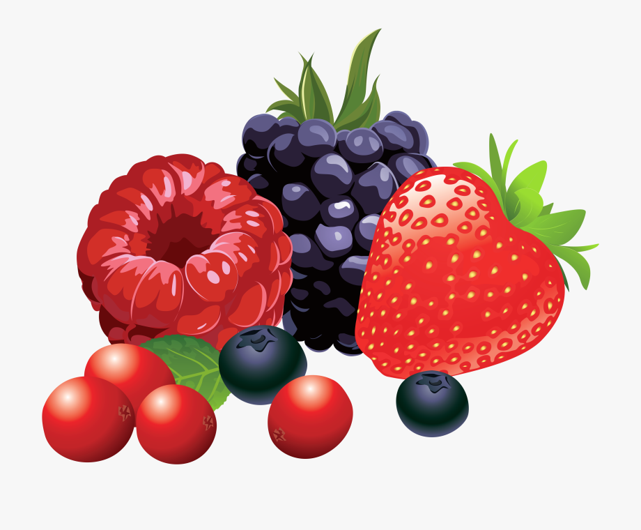 Collection Of Free Berries Download Forest Fruits.