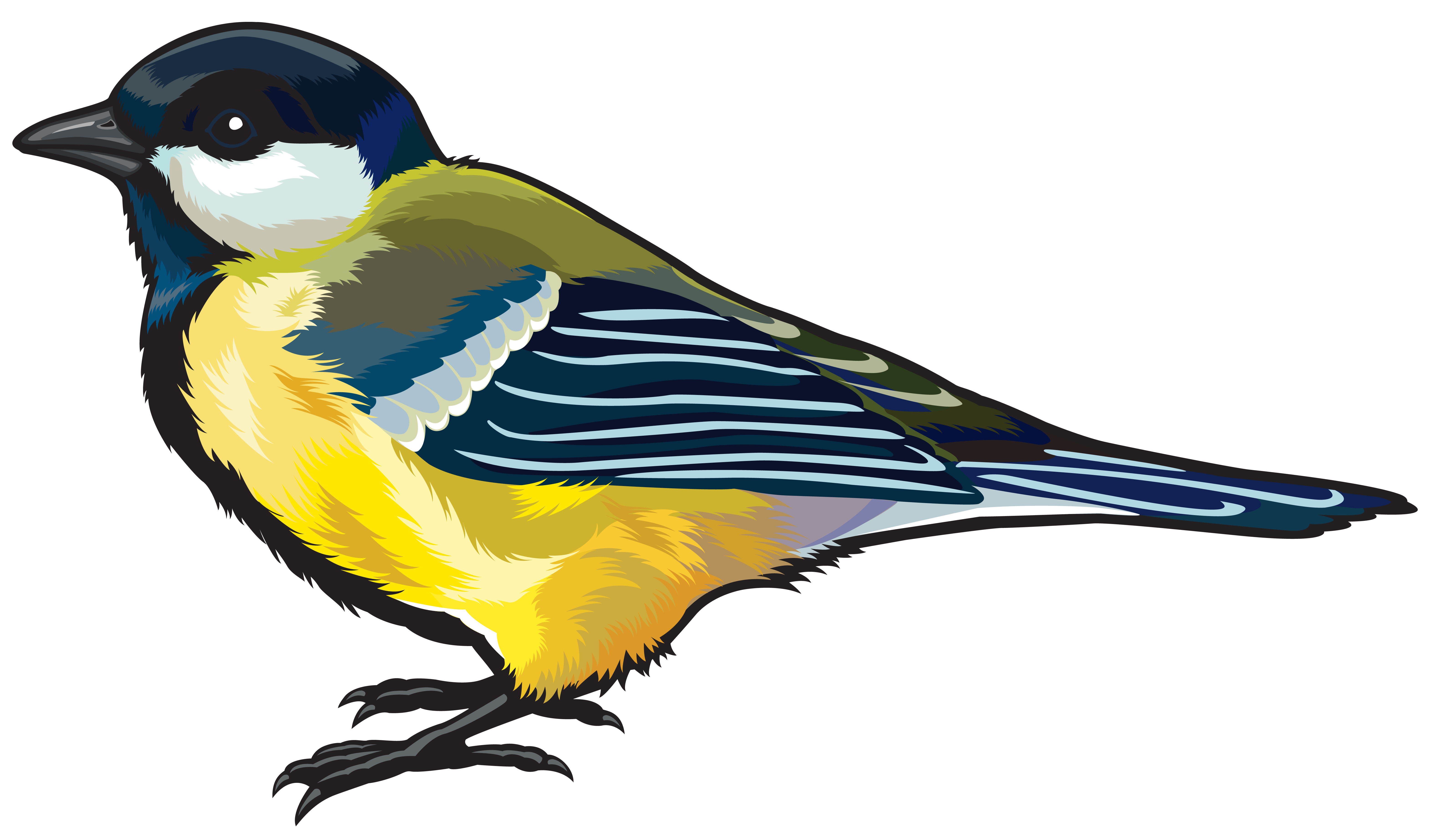 Large Bird PNG Clipart Image.