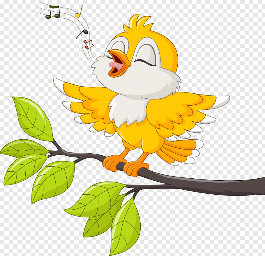Bird singing on tree branch illustration, Bird Singing.