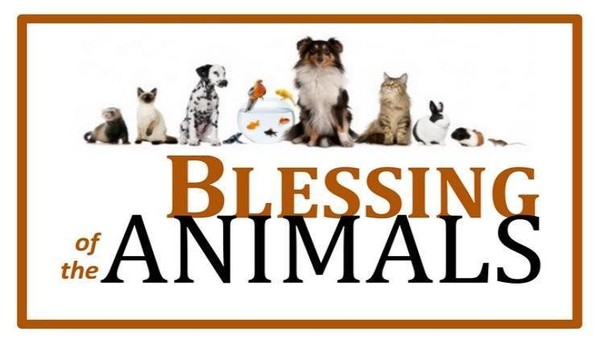 Presbyterian Church of Milford to bless animals on Oct. 21.
