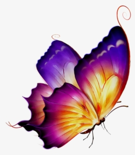 Free Free Butterflies Clip Art with No Background.
