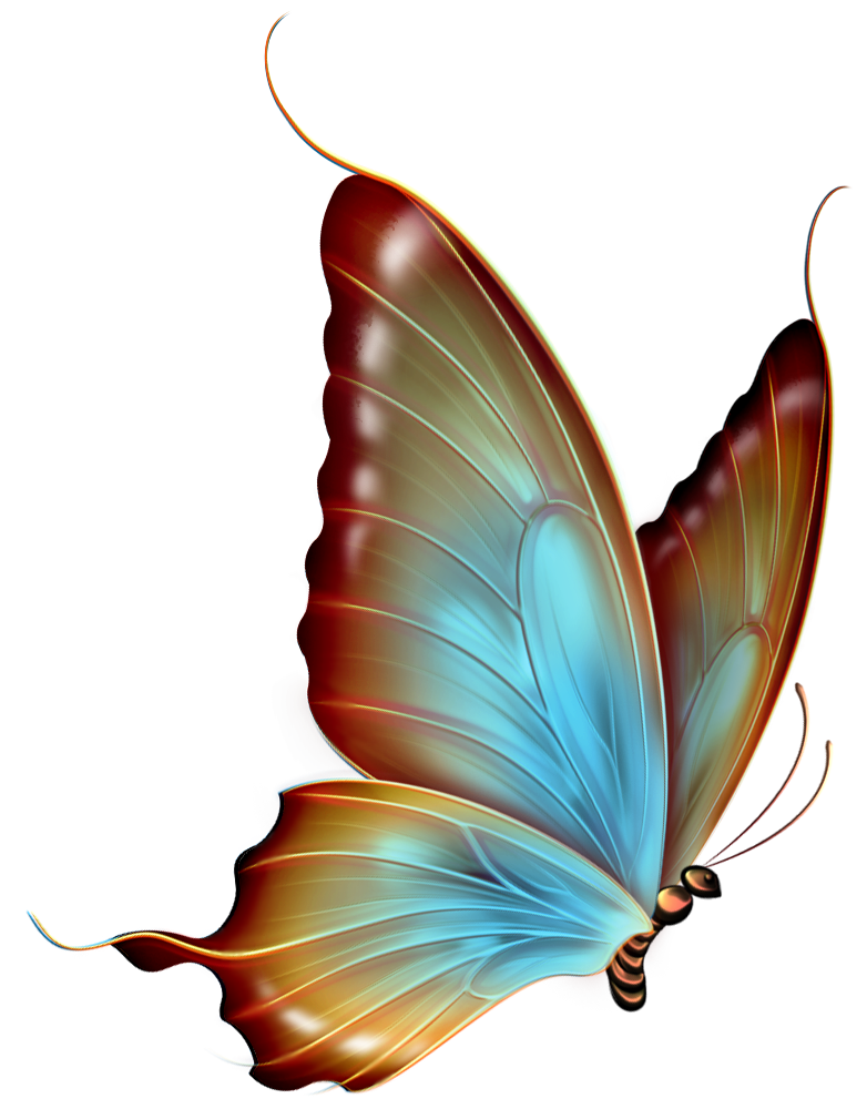 Brown and Blue Transparent Butterfly Clipart.