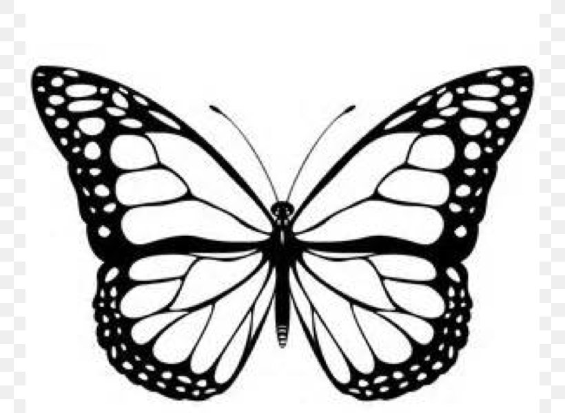 Monarch Butterfly Black And White Clip Art, PNG, 746x600px.
