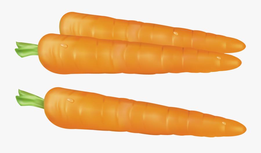 Carrots Clipart.
