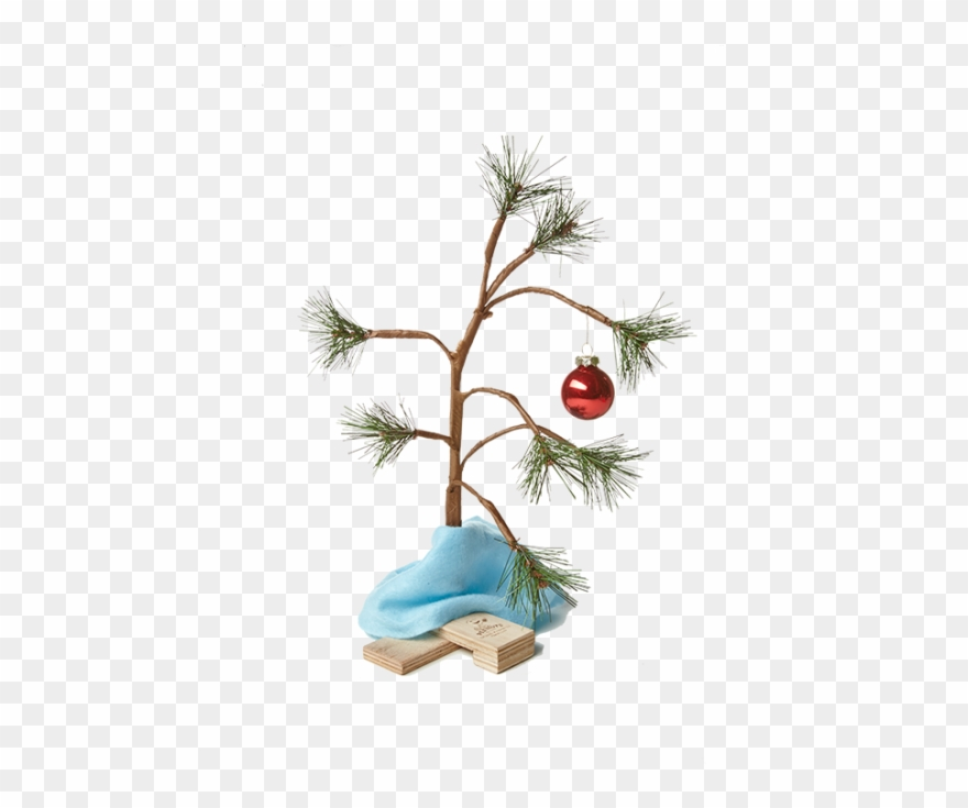Charlie Brown Christmas Tree Png & Free Charlie Brown.