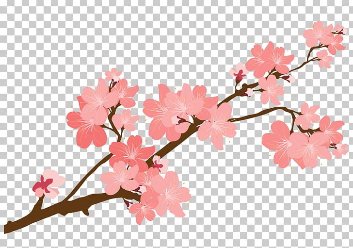 Cherry Blossom Sticker PNG, Clipart, Art, Blossom, Branch.