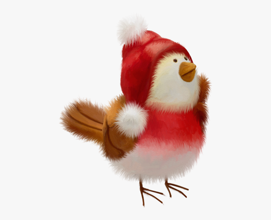Christmas Bird, Christmas Animals, Christmas Clipart,.