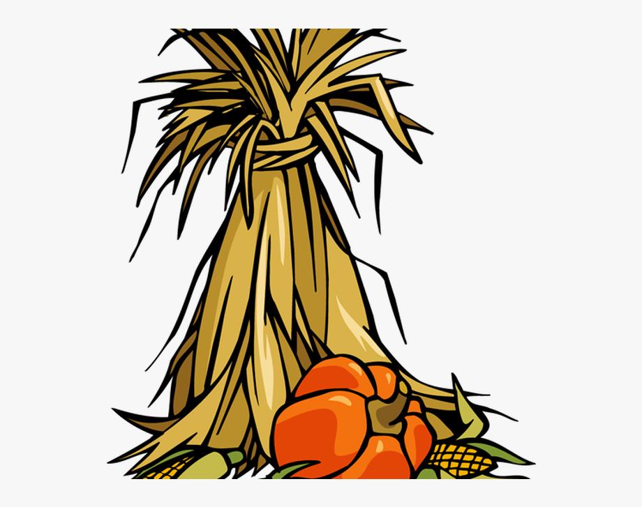 Corn Stalks Clipart , Transparent Cartoon, Free Cliparts.