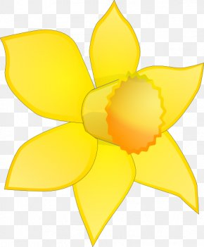 Daffodil Cartoon Images, Daffodil Cartoon Transparent PNG.
