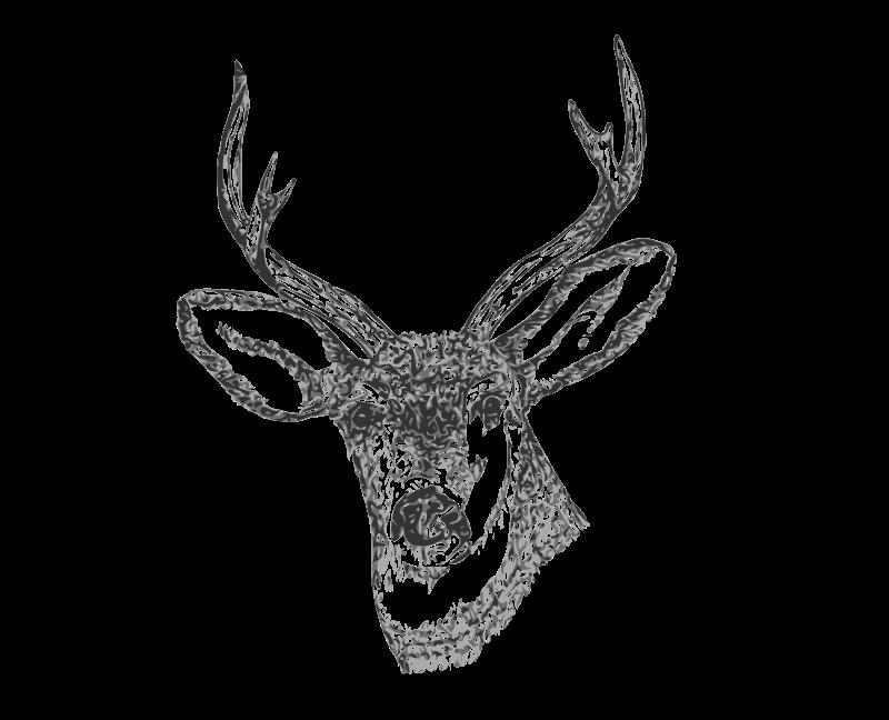 Free Clipart: Deer Head.