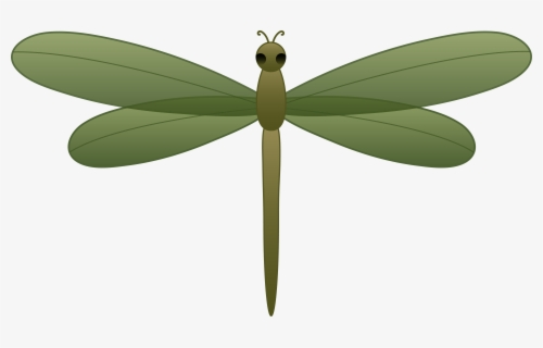Free Dragonflies Clip Art with No Background.