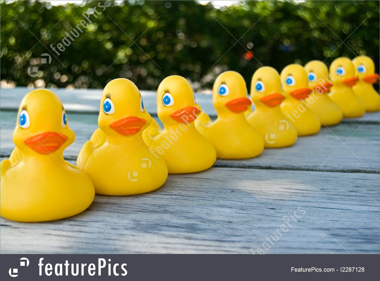 Row of rubber ducks on a weather table top..