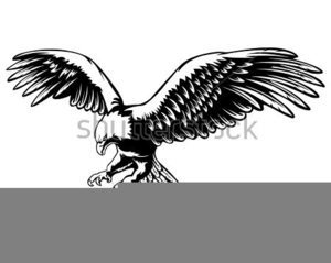 Clipart Of Eagle Soaring.